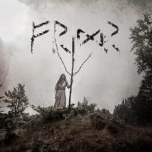 دانلود آلبوم موسیقی Danheim-Fridr