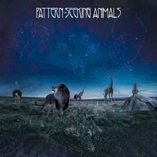 دانلود آلبوم موسیقی Pattern-Seeking-Animals-Pattern-Seeking-Animals