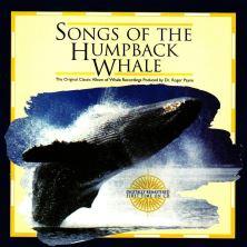 دانلود آلبوم موسیقی Roger-Payne-Songs-of-the-Humpback-Whale