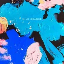 دانلود آلبوم موسیقی Mild-Orange-Mild-Orange