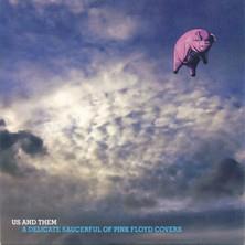 دانلود آلبوم موسیقی VA-Us-and-Them-A-Delicate-Saucerful-of-Pink-Floyd-Covers