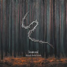 دانلود آلبوم موسیقی Lunatic-Soul-Through-Shaded-Woods