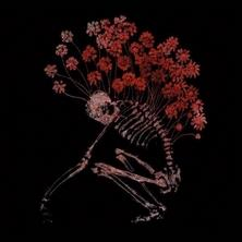 دانلود آلبوم موسیقی Tenhi-Folk-Aesthetic-1996-2006
