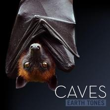 دانلود آلبوم موسیقی Earth-Tones-Caves